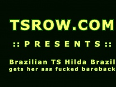 Latina TS Hilda Brazil Bareback