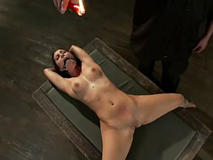 submissive chick tied with ropes